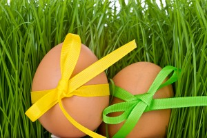 easter egg and grass